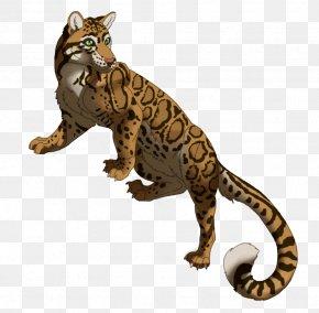 Leopard - Felidae Formosan Clouded Leopard Ocelot Wildcat PNG