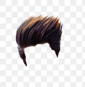 Picsart Photo Studio Hair Wig Png 554x712px Picsart Photo Studio Brush Editing Hair Hairstyle Download Free