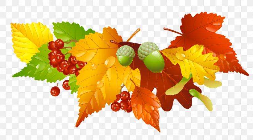 Autumn Leaf Color Clip Art, PNG, 1263x702px, Autumn, Autumn Leaf Color, Floral Design, Flower, Flowering Plant Download Free