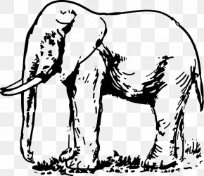 Elephant Black And White - Elephantidae Drawing Black And White Clip Art PNG
