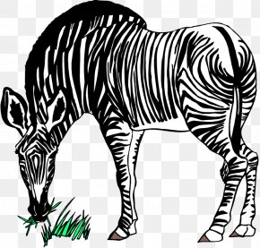 Tiger Stripes Clipart - Zebra Free Content Stock.xchng Clip Art PNG