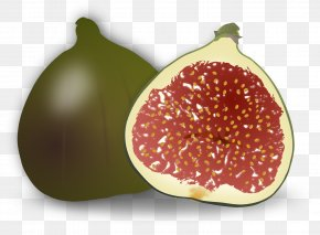 Mango - Common Fig Weeping Fig Fruit Clip Art PNG