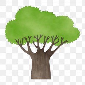 Flower Leaf Vegetable - Green Leaf Tree Plant Grass PNG