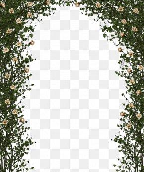 Beige Flower Vine Door - Rose Shrub Flower Clip Art PNG