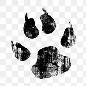 Watercolor Animals - Tiger Dog Cat Paw Clip Art PNG