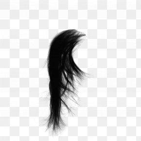 Real Long Hair - Drawing Capelli Black Hair PNG