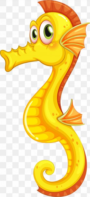 Seahorse - New Holland Seahorse Slender Seahorse Tiger Tail Seahorse Clip Art PNG