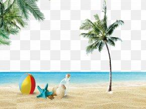 Beach Scenery - Beach Icon PNG