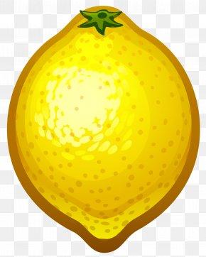 Large Painted Lemon Clipart - Lemon Clip Art PNG