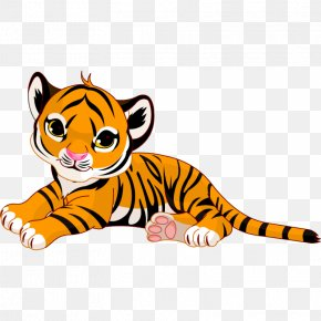 Tiger Cartoon - Tiger Cartoon Stock Photography Royalty-free PNG