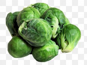 Cabbage - Brussels Sprouts Vegetarian Cuisine Cabbage Vegetable Sprouting PNG