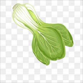 Chinese Cabbage - Leaf Vegetable Chinese Cabbage PNG