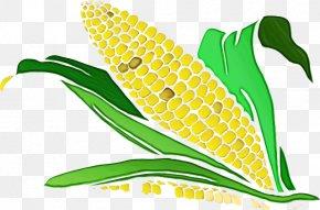 Vegetarian Food Plant - Green Corn Yellow Leaf Plant PNG