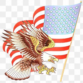 Bald Eagle Flag Of The United States Clip Art PNG