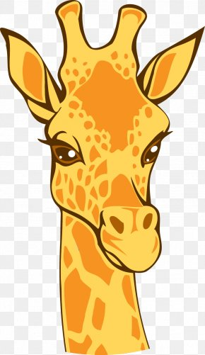 Vector Giraffe - Northern Giraffe Lion Euclidean Vector Illustration PNG