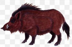 Vector Wild Boar - Wild Boar Game Euclidean Vector PNG