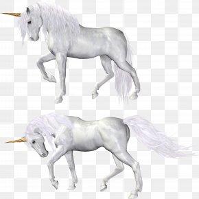 Unicorn - Horse Unicorn PNG
