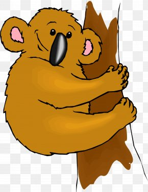 Cartoon Raccoon - Koala Animation Cartoon Illustration PNG