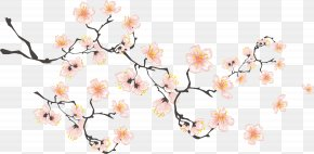 Hand-painted Cherry Blossoms - Cherry Blossom If(we) Download Icon PNG