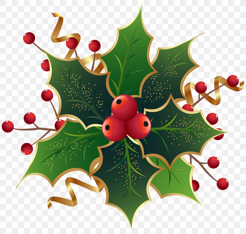 Christmas Eve At Friday Harbor Common Holly Mark Nagle The Ivy Green, PNG, 6000x5719px, Common Holly, Aquifoliaceae, Aquifoliales, Bombka, Branch Download Free