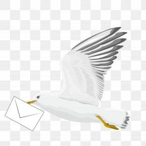 Vector Pattern Flying Pigeon Pigeon - Bird Euclidean Vector PNG