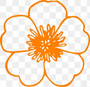 Orange Flowers Cliparts - Coloring Book Flower Adult Child Drawing PNG