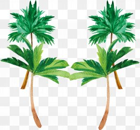 Watercolor Hand Painted Coconut Tree - Tree Coconut Watercolor Painting Plant PNG
