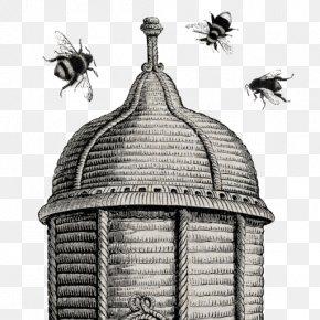 Bee - Western Honey Bee Beehive Beekeeping Queen Bee PNG