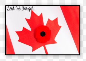 Love Doing Activities On The Seventh Day - Flag Of Canada Public Holiday Armistice Day Canada Day PNG
