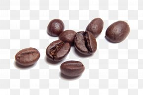 Coffee Beans Transparent - Coffee Bean Cafe Coffee Roasting PNG
