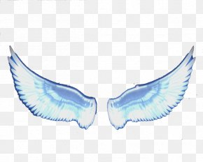 Angel Feather Wings - Angel Wing Feather PNG