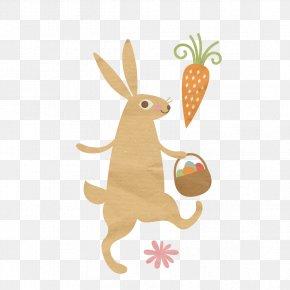 Kangaroo - Easter Bunny Rabbit Clip Art PNG