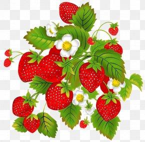 Strawberry - Strawberry Aedmaasikas Child Auglis Raspberry PNG