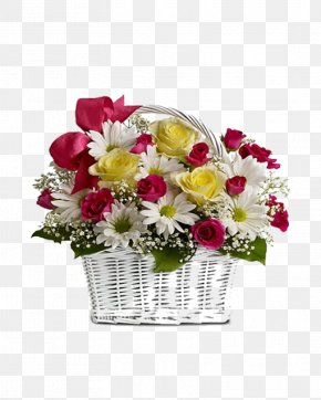Mother's Day - Flower Delivery Floristry Flower Bouquet Transvaal Daisy PNG