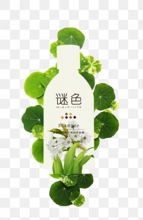 Shampoo - Bottle Shampoo Hair Conditioner Plant PNG