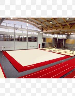 Perú - Gymnastics At The 1956 Summer Olympics – Women's Floor Artistic Gymnastics Sport PNG