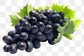 Grape Vine - Common Grape Vine Juice Clip Art PNG