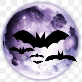 Halloween - Halloween Jack-o'-lantern Iconfinder Icon PNG