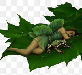 Green Elf - Tooth Fairy Elf Fairy Tale Spirit PNG