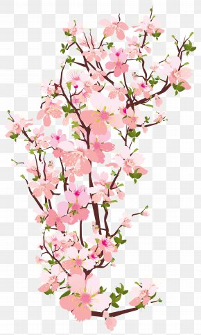 Spring Tree Branch Transparent Clip Art Image - Branch Tree Clip Art PNG