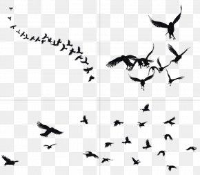 Flying Crow - DeviantArt Bird Clip Art PNG