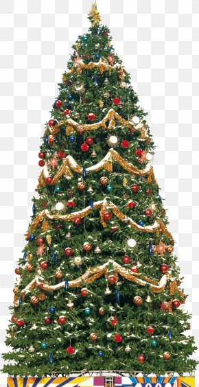 Christmas - New Year Tree Christmas Clip Art PNG