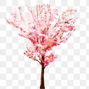 Cherry Blossom Watercolor - Tree Branch Twig PNG