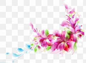 Colorful Pattern Material - Flower Euclidean Vector Clip Art PNG