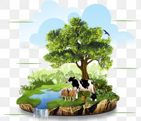 Natural Environment - Agriculture Organic Food Organic Farming Natural Environment PNG