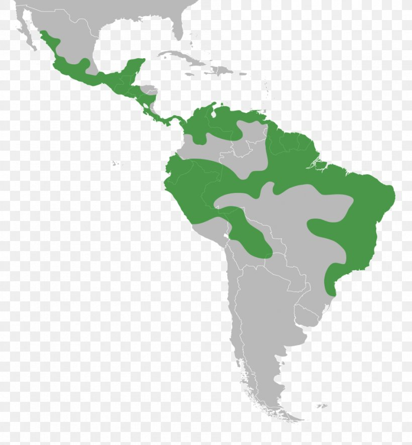 Latin America South America United States Map, PNG ...
