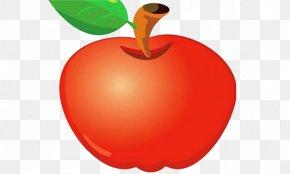 Cartoon Beautiful Red Apple - Apple Cartoon PNG