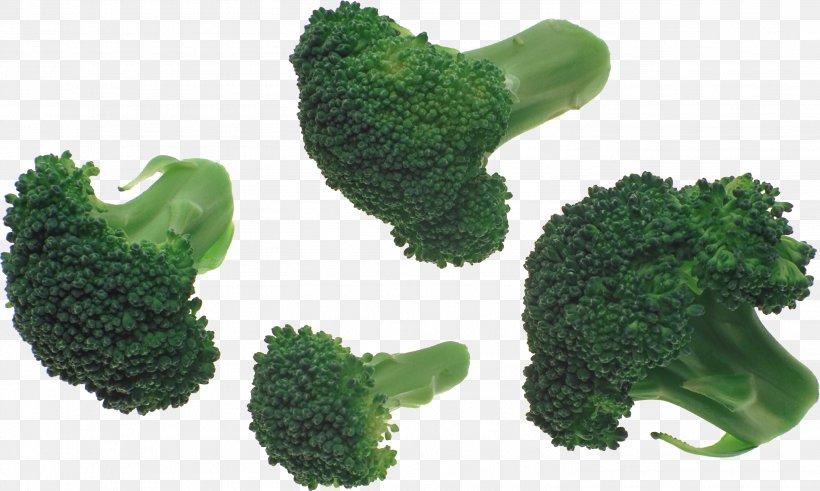 Broccoli Slaw Vegetable, PNG, 2907x1741px, Broccoli Slaw, Broccoli, Grass, Green, Image File Formats Download Free
