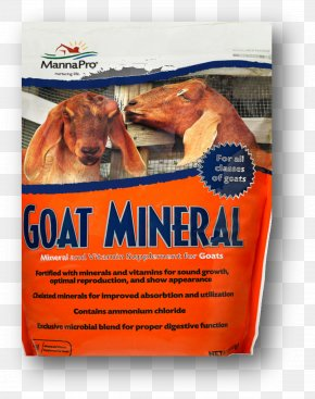 Goat - Sheep–goat Hybrid Sheep–goat Hybrid Mineral Dietary Supplement PNG