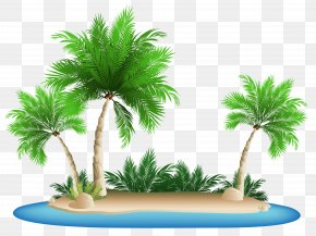 Palm Trees Island Clipart Picture - Kokopo Beach Bungalow Resort PNG